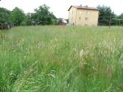 Działka 1140m2 Czechowice Dz. Brożysko 80000,-