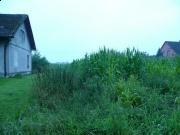 Działka rolna - Frelichów, 7276m2